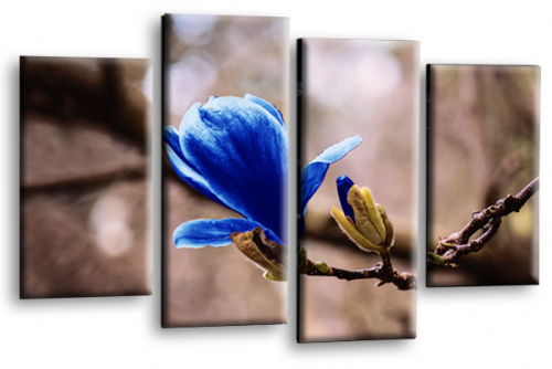 Floral Canvas Wall Art Picture Grey Blue Spring Flower Print Split